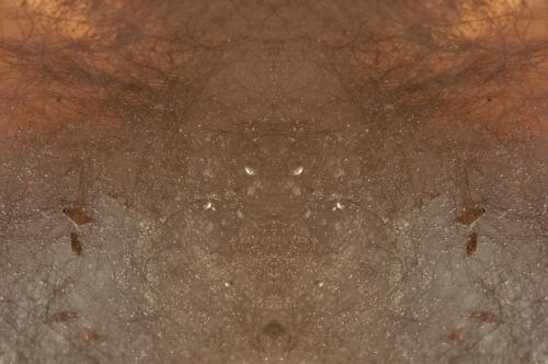 Emergence-2461
