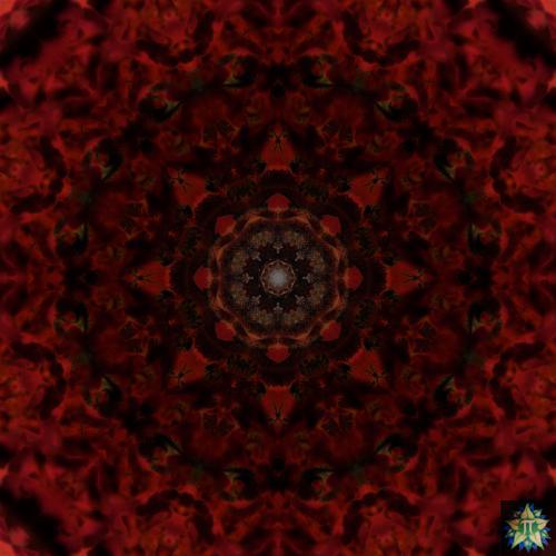 Red Bee Mandala